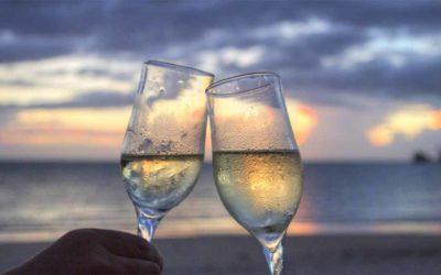 Bruisende bubbels van de Champagne van Louise Brison